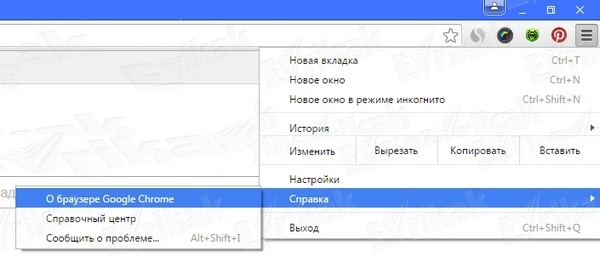 Скачать Flash Player для Google Chrome